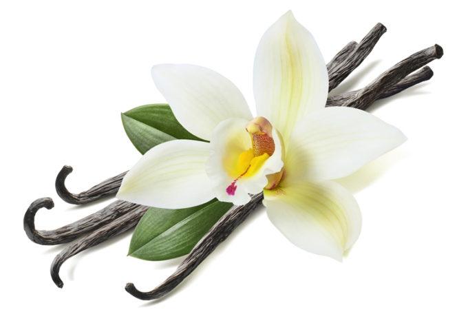 Какво знаете за ароматната ванилия?
